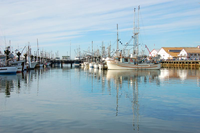 Steveston is home to Canada's largest commercial fishing fleet, comprised of seiners, gillnetters, trawlers and other vessels.
