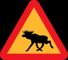 moose warning road sign