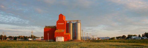 grain elevator near Oyen, Alberta