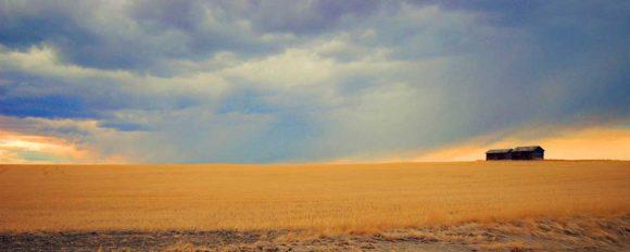 prairie-near-Lethbridge