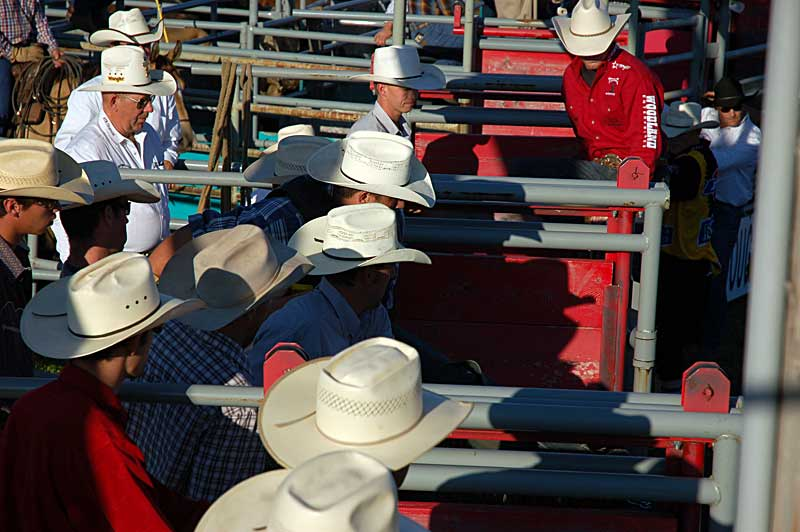 Bull riders and handlers getting ready around the chutes.