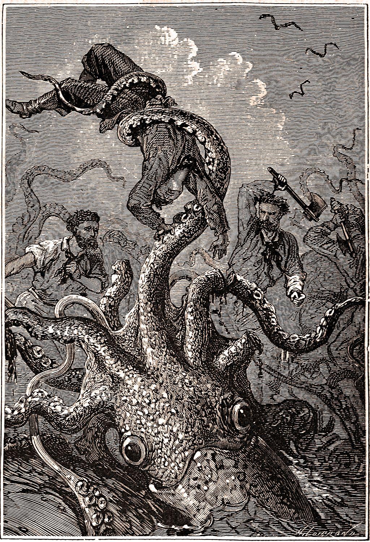 Cinda Chavich serious squid