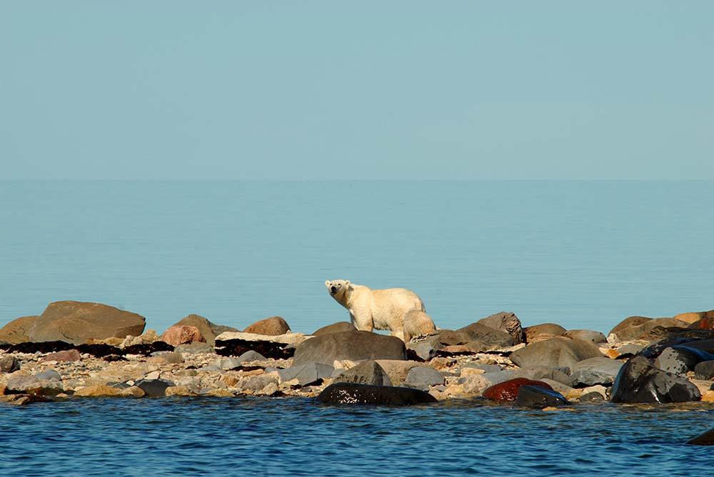 110 Nature Hotspots in Manitoba and Saskatchewan