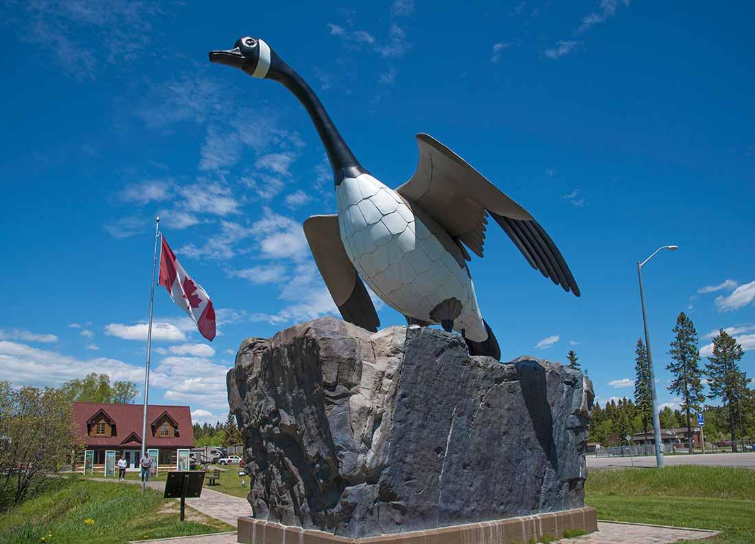 Wawa Ontario goose