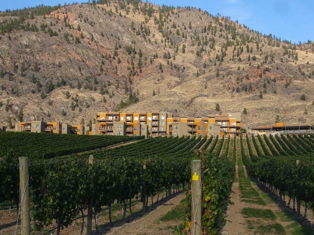 NK'MIP Cellars Native owned winery - Spirit Ridge Resort and vineyards