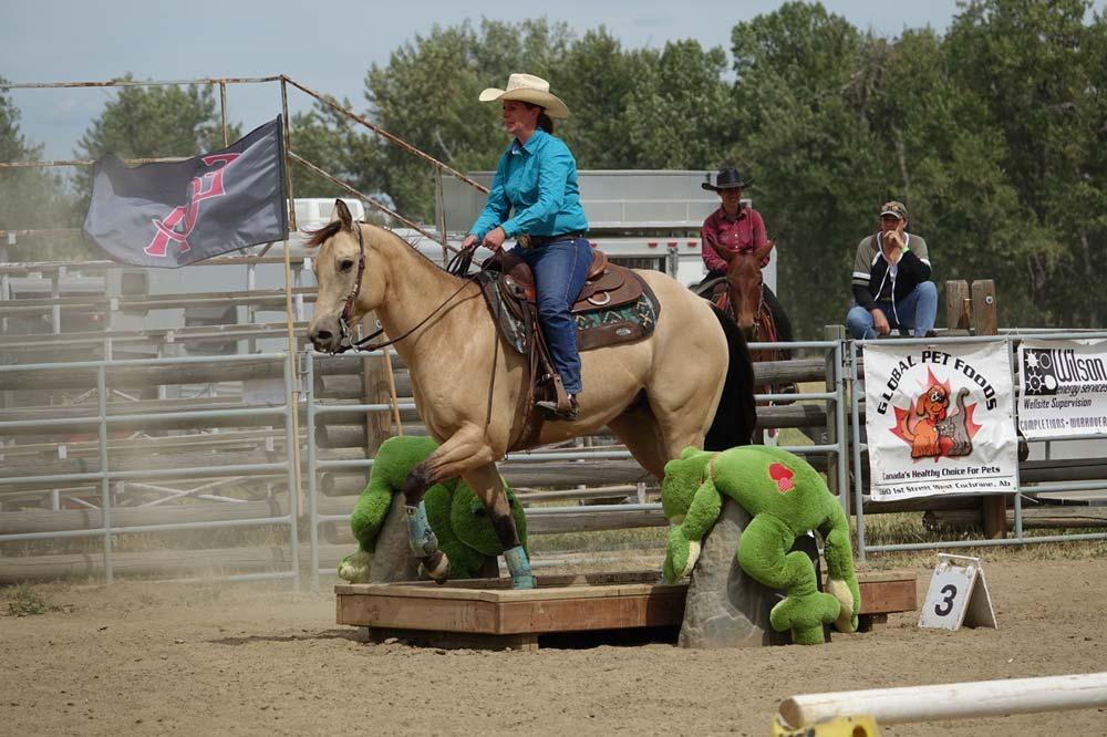 horse at Bar U Ranch National Historic Site